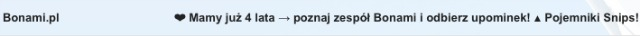 bonami-zespol640