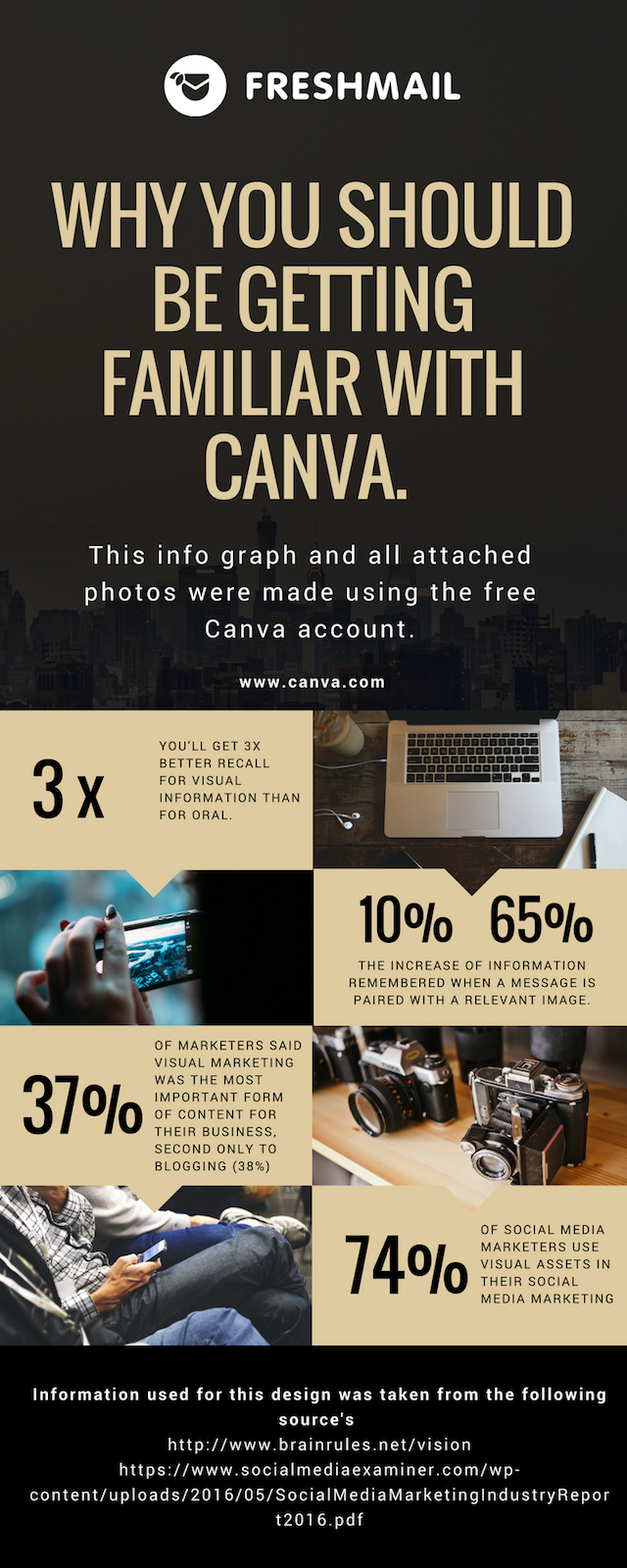 canva infographic