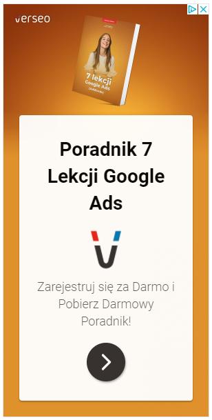 lead-magnet-google ads